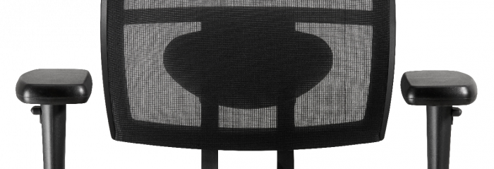 Bureaustoel Met Lendesteun.Losse Lendesteun T B V Polaris Of Capella Bureaustoel Mediplus